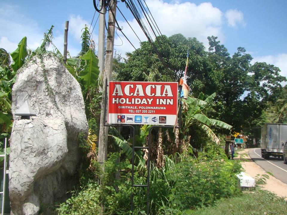 Acacia Gallery02