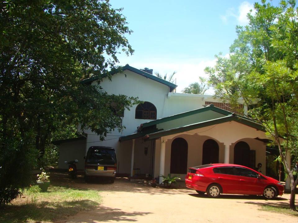 Acacia Gallery03
