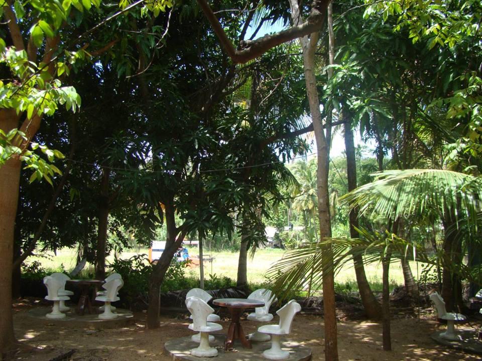 Acacia Gallery05